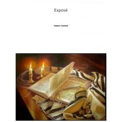 Expose (PDF Download)