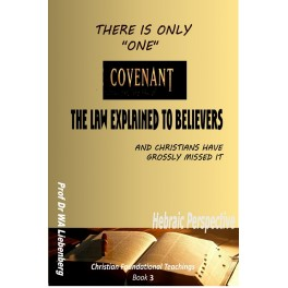 There is only One Covenant, and Christians Have Missed It: (Christian foundational Teachings Book 3)