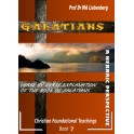 Galatians Verse by Verse Explanation: A Hebraic Perspective (Teachings Series Book 7)